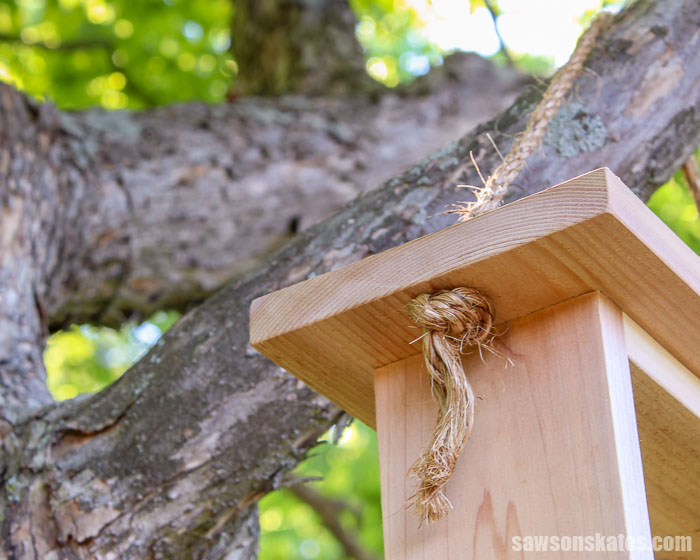 An easy to make DIY bird feeder hanging from a tree