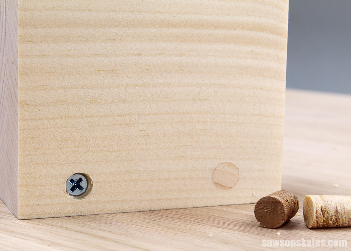 Countersink hole filled with a wood plug